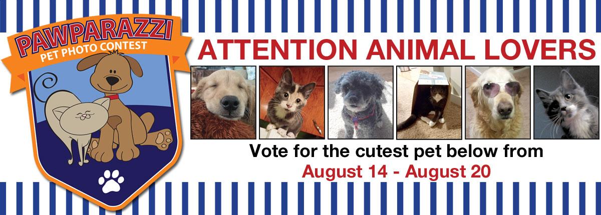 Pawparazzi Pet Photo Contest